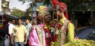 gay marriage in india