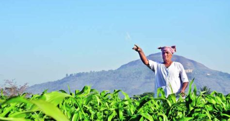 All you need to know about Global Rajasthan AgriTech Meet