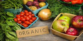 Best 5 organic food restaurants in India