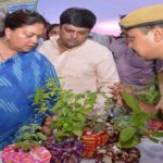 CM Raje begins tree plantation drive from Jhalawar district. Let's make #MyGreenRajasthan