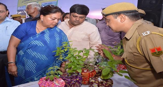 CM Raje begins tree plantation drive from Jhalawar district - My Green Rajasthan