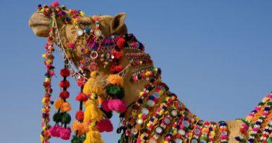 Deset festival 2017 Jaisalmer