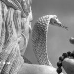 Influential Lord Shiva Avtars Which Manifest The Gist Of Our Lives