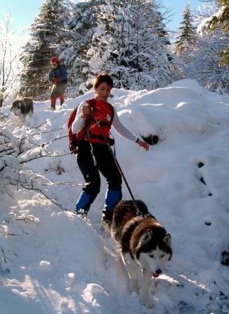 Trekking with the Mountain Dogs.