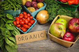 Raje Government Pitches Organic Farming in Rajasthan to Double Farmer Income