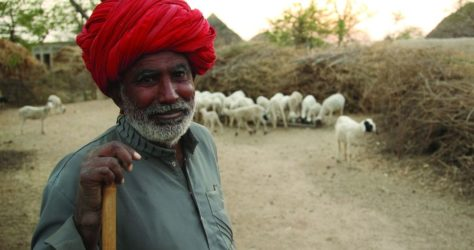 Rajasthan Farmers Shun the Ideas of Protests, Supporters Slam the Opposition for Inflammatory Comments
