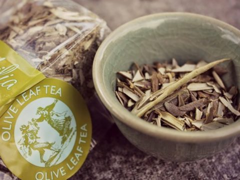 Raje Inaugurates Olitia, Rajasthan's First Indigenous Olive tea: Check out its Amazing Health Benefits!