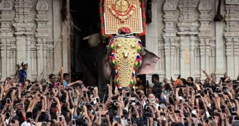 thrissur-pooram-festival-759