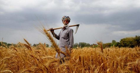 Farm Loan Waiver policy