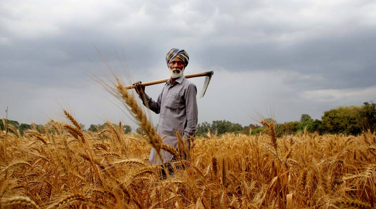 Farm Loan Waiver policy